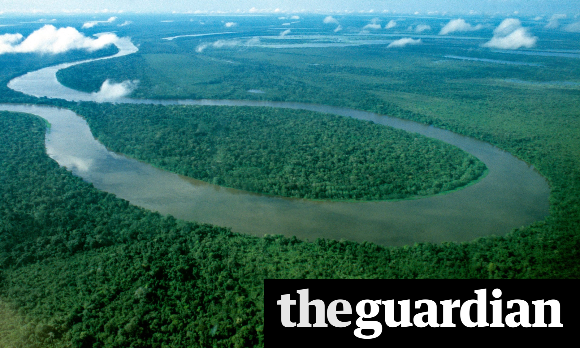 """SHELL BOSS SAYS MASS REFORESTATION NEEDED TO LIMIT TEMPERATURE RISES TO 1.5C."""